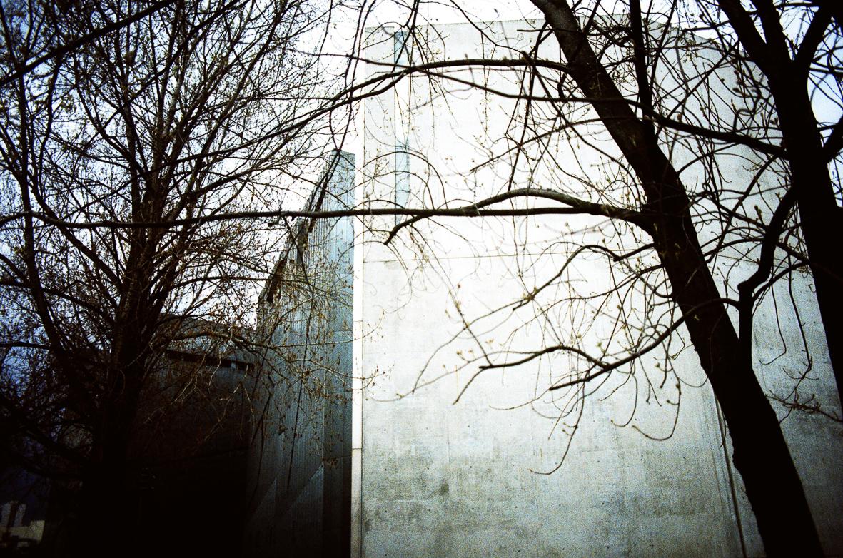 dunkle Bäume vor der grauen Betonfassade des jüdischen Museums von Daniel Liebeskind